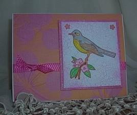 Copiccoloring,marthastewartbirdas