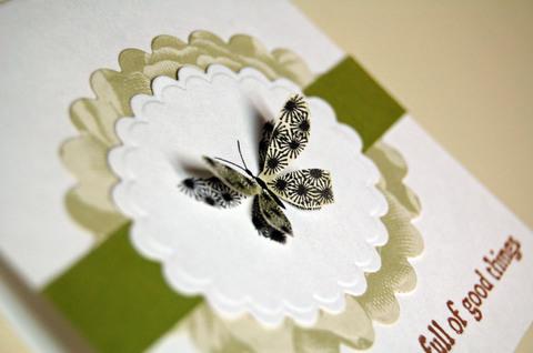 Butterfly_carda